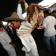 Oaxaca 09